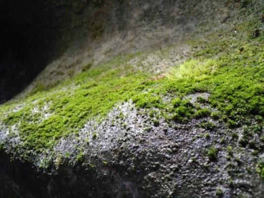senbutsu-cave_130418