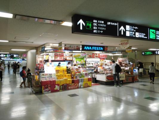 FUK_FukuokaAirport1_1450