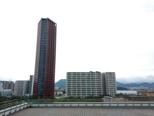 HoneyCoffee_Islandcity_teriha_Fukuoka_1842