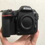Nikon_D500_7533